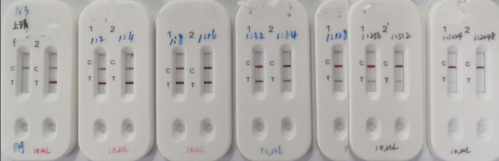 >鐘南山院士指導研發快速檢測試劑盒 采一滴血15分鐘內可出結果