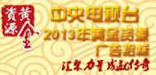 中央电视台2013年黄金资源<br>广告招标