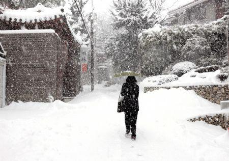 A pedestrian walks in heavy snow at a street in Seoul, capital of South Korea, Jan. 4, 2010. Seoul and surrounding regions witnessed the biggest snowfall in the recent 9 years on Monday.(Xinhua/He Lulu)