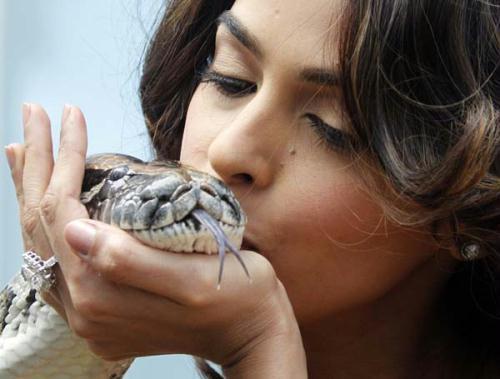 "BollywoodactressMallikaSherawatkissesasnakeassheposesduringaphotocalltopromotethefilm""HISS""bydirectorJenniferLynchatthe63rdCannesFilmFestivalMay16,2010.(Xinhua/ReutersPhoto)"