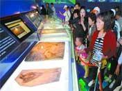 El pabellón de Liaoning expone fósiles únicos de dinosaurio