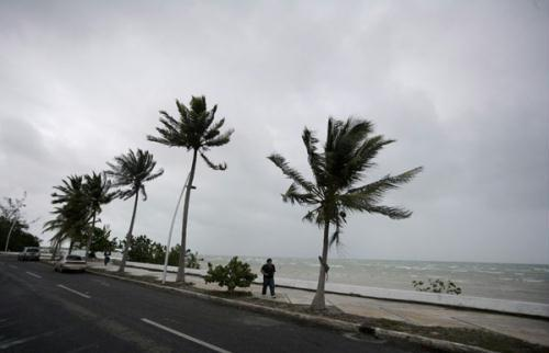 Palm trees move in the wind as a man walks on the shore in Chetumal June 26, 2010. Tropical Storm Alex was close to making landfall in nearby Belize on Saturday as it dumped rain on Guatemala and Mexico's Yucatan peninsula, the U.S. National Hurricane Center said.(Xinhua/Reuters Photo)