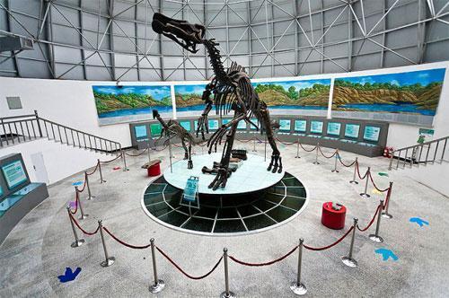 伊春森林博物馆—小兴安岭恐龙博物馆—水上公园