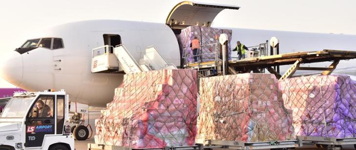 超万份口罩 手套 检测试剂……中国援助波兰防疫物资抵达华沙