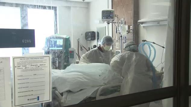 单日新增死亡接近历史最高纪录 美疾控中心主任:美明年2月死亡总人数或达40至50万人