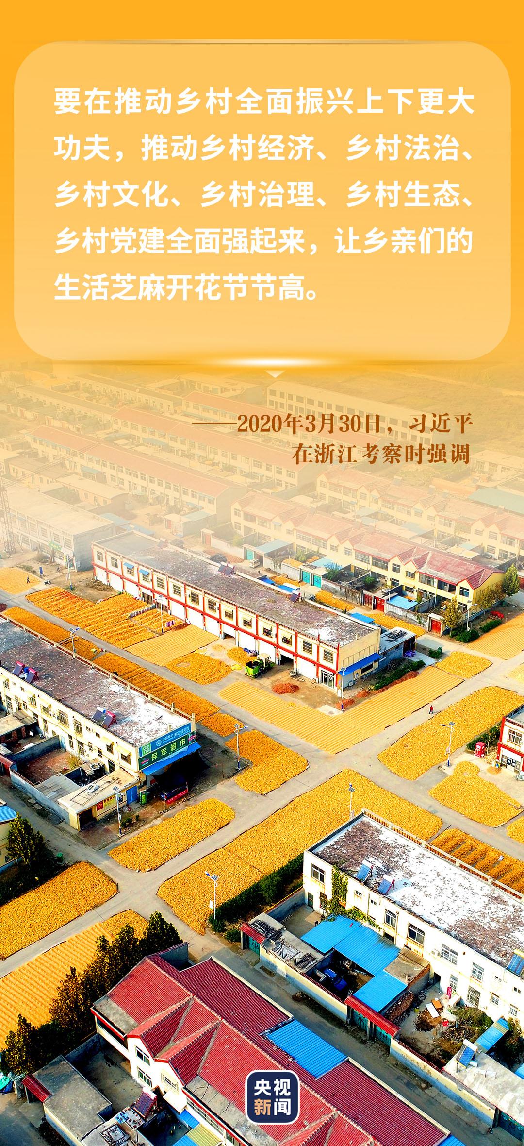 """习近平心中的""""三农""""画卷(图12)"""