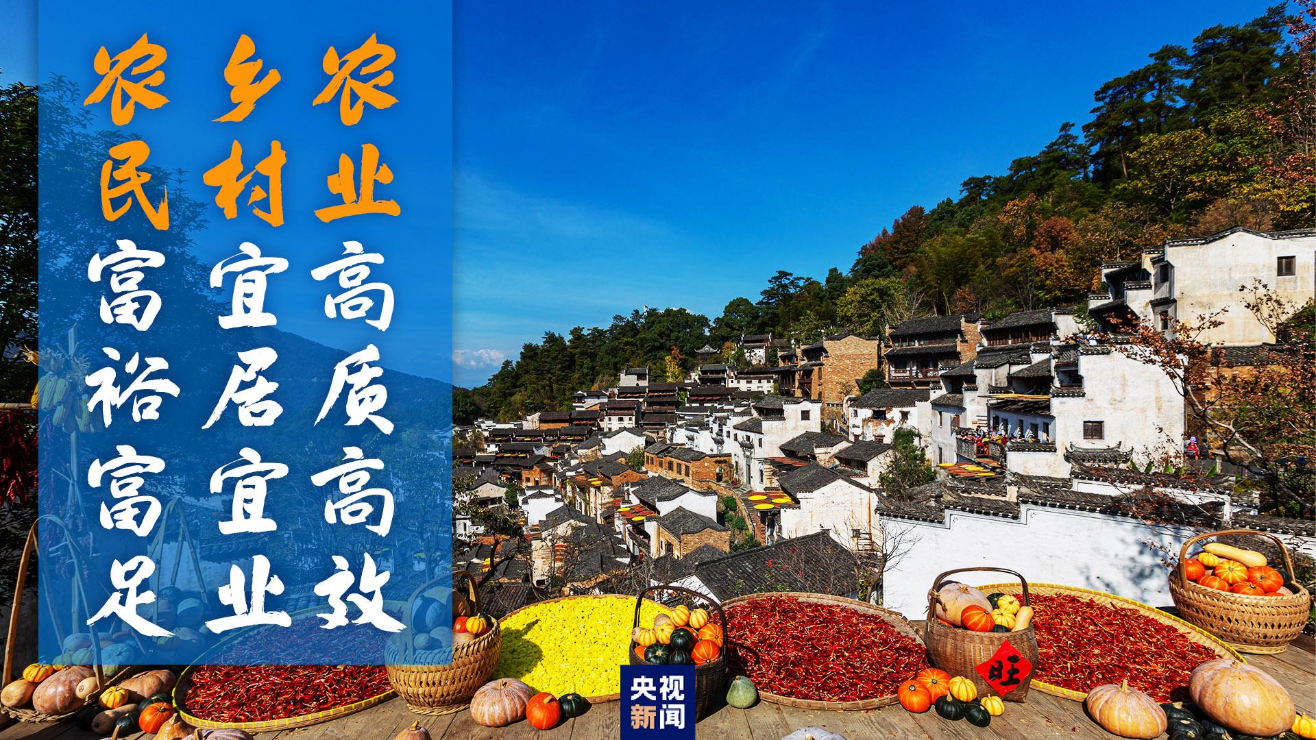 """习近平心中的""""三农""""画卷(图13)"""