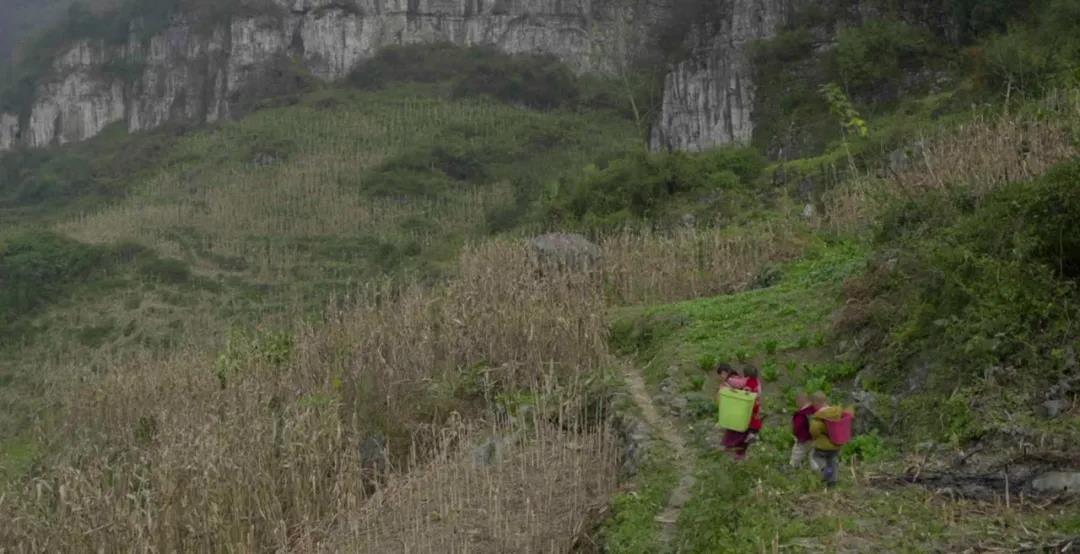脱贫之后 乡村振兴是怎样的画面?