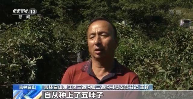 我国迎来第四个中国农民丰收节 全国各地农民分享丰收喜悦