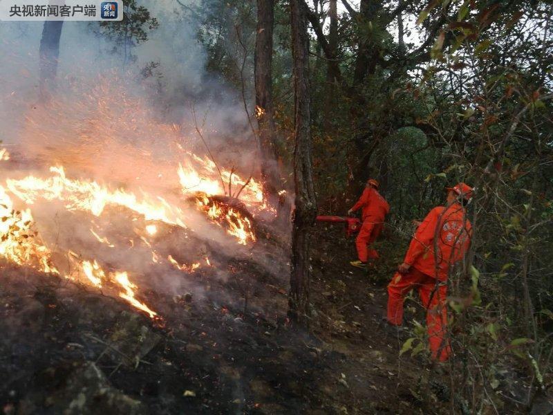 四川凉山州两县森林火灾在扑救 越西县山火已灭