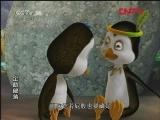 企鹅部落 小马虎报恩  20110912