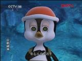 企鹅部落 太阳能充气泳衣(下) 20110912