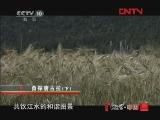 《地理中国》 20111223 系列节目《中国冰川大调查》——勇探唐古拉(下)