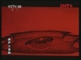 葫芦小金刚4 势均力敌 动画大放映 20120103