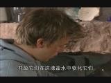 BBC纪录片《大城小厨》(第三辑) - 行者 - ylh630的博客
