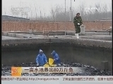 一亩水池养出80万斤鱼_致富经