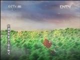 《动画乐翻天》 20120523