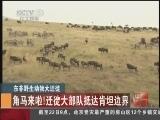 [視頻]14點中國新聞_20120722