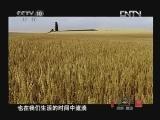 《探索·发现》 20120725 中华龙(九):龙在民间