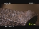 《茶叶之路》 20120801 第二十四集 鄱阳湖遗响
