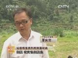 严汉荣竹艺加工:垃圾堆里找到的财富转机