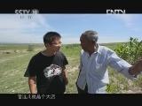 《茶叶之路》 20120907 第六十一集 东口西口