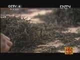 《走遍中国》20120914中国古镇(25)易武:茶路之源