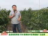 走进哈密枣园 节水灌溉技术在枣园的广泛应用
