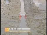 [农广天地]杂交水稻制种技术(20121010)
