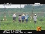 《走遍中国》20121030中国古镇(70)甪直镇:出水芙蓉