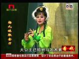 《杨九妹取金刀》第十场 一见钟情 看戏 - 厦门卫视 00:20:21