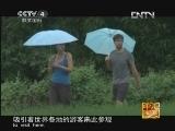 《走遍中国》20121102中国古镇(73)程阳:迷人侗寨
