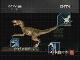 《自然传奇》 20121106 动物生存奥秘(2)