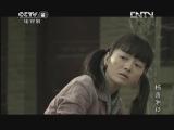 杨善洲 12