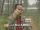 谭木养养鸡致富经:养鸡粪淘金 年卖百万