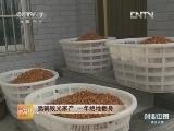 章爱琳山核桃致富经,创业中国・浙江人物