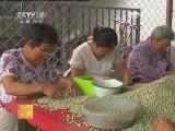 [农广天地]豌豆食品加工(20121220)