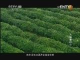 《探索·发现》 20130109 天赐康巴 (三)