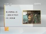 农广天地,香菇反季节栽培技术