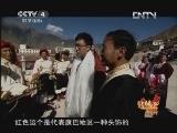 《远方的家》 20130131 北纬30°·中国行(157)