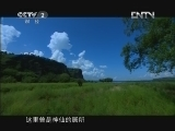 《龙之江》 20130204 第二集 西辞故乡