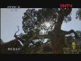 《故宫100》 第48集 高清版