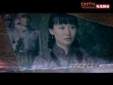电视剧《桐柏英雄》主题曲《绒花》