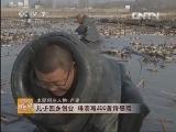 本期创业人物卢建莲藕种藕致富经
