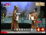 《龙凤环》第十一场 看戏 - 厦门卫视 00:24:43