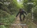 《地理中国》 20130907 地球家园-莽山寻蛇记 中
