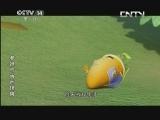 [动画大放映]《参娃与天池怪兽》 第12集 特别的礼物 20131008
