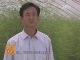 [农广天地]井冈701芦笋栽培技术(20131202)