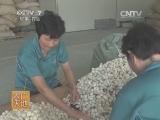 [农广天地]蚕丝被制作工艺(20131213)