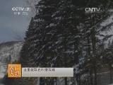 [农广天地]走进休闲农业----北方冬季民俗村(20131218)